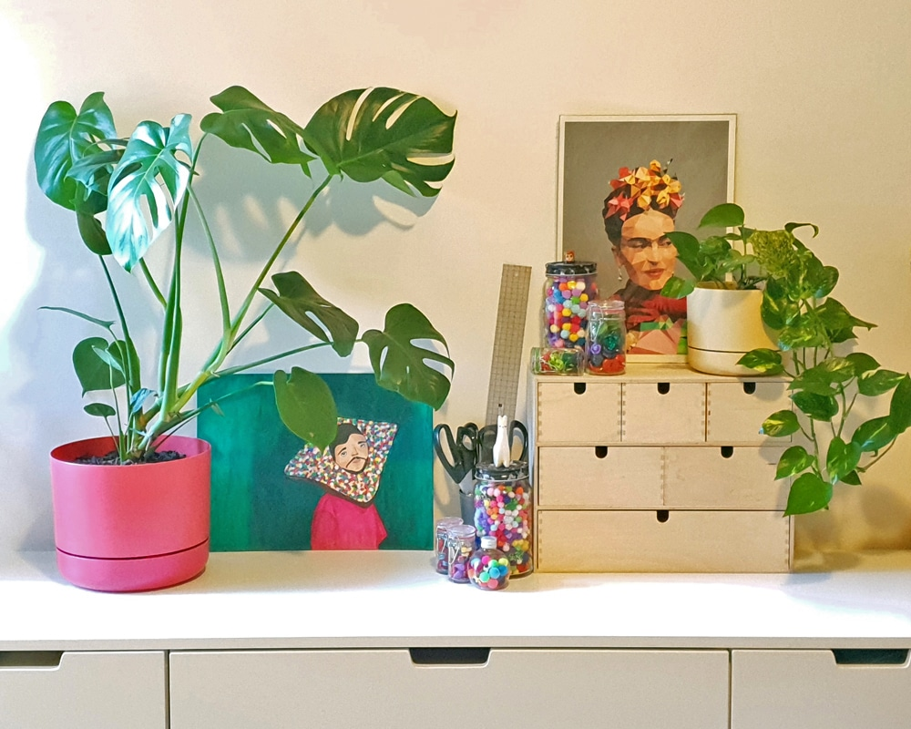 Cork & Chroma finds the. perfect plants for your creative space